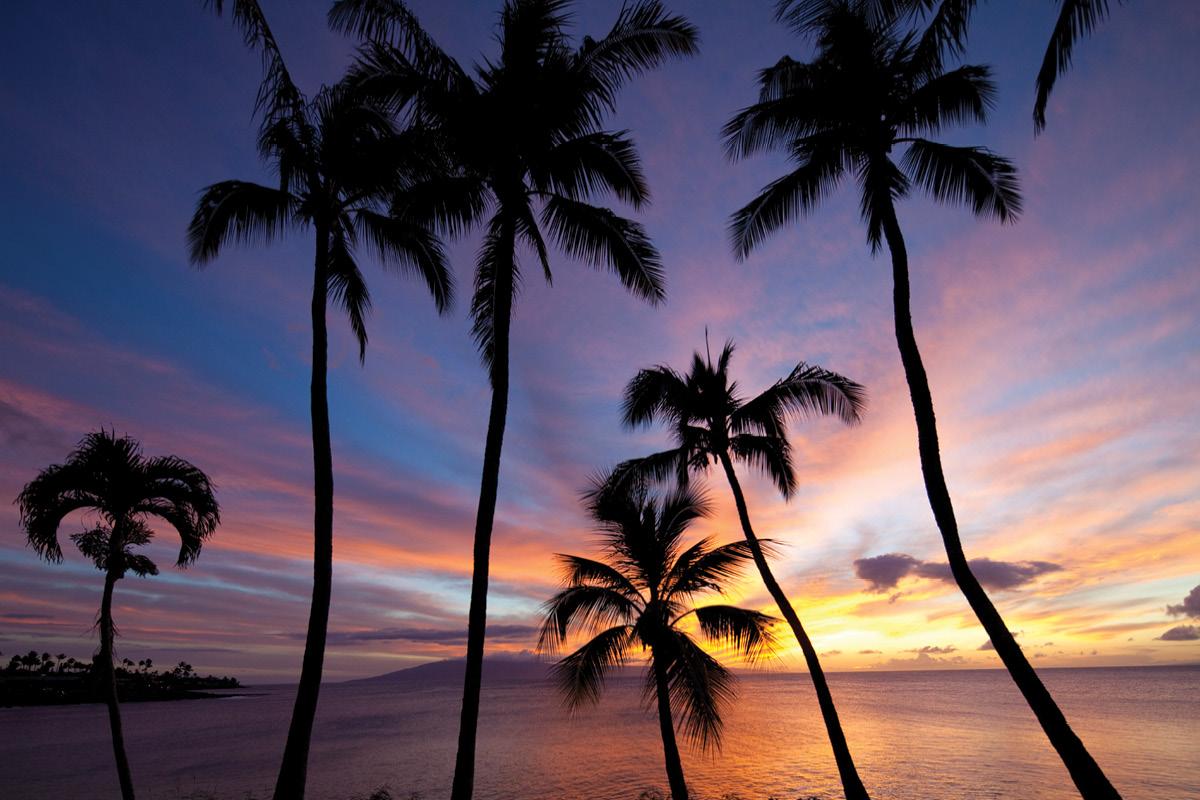 Napili Kai Beach, Maui